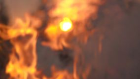 Conceito da chama do fogo do movimento lento video estoque