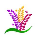 Conceito da ecologia das folhas e das borboletas Imagem de Stock