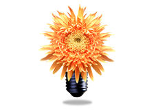 Conceito da energia de Eco Foto de Stock Royalty Free