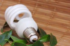 Conceito da energia de Eco com ampola Fotografia de Stock Royalty Free