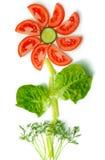 Conceito da flor feito com os legumes frescos saudáveis Fotos de Stock Royalty Free