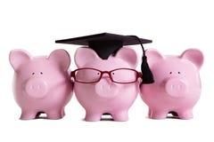 Conceito da graduação do graduado da estudante universitário da faculdade, sucesso da educação, conduzindo a classe Foto de Stock Royalty Free