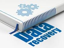 Conceito da informação: registre as engrenagens, recuperação dos dados no fundo branco Imagem de Stock Royalty Free