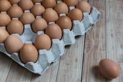 Conceito da liderança: Um ovo é proeminente do grupo de bro Foto de Stock Royalty Free