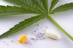 Conceito da medicina alternativa Fotos de Stock