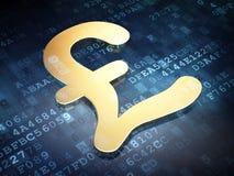 Conceito da moeda: Libra dourada em digital Foto de Stock Royalty Free