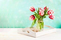 Conceito da mola com tulipas Fotografia de Stock