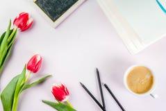 Conceito da mola com tulipas Fotos de Stock Royalty Free