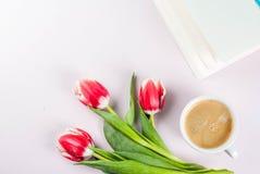 Conceito da mola com tulipas Imagens de Stock
