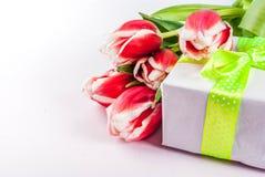 Conceito da mola com tulipas Imagens de Stock Royalty Free