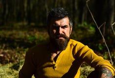 Conceito da nostalgia da solidão e do outono Indivíduo com barba fotografia de stock royalty free