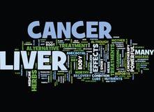 Conceito da nuvem da palavra do fundo do texto do câncer do fígado ilustração royalty free
