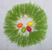 Conceito da Páscoa com ovos coloridos Fotos de Stock Royalty Free