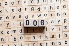 Conceito da palavra do cão imagem de stock royalty free