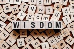Conceito da palavra da sabedoria imagem de stock