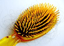 Conceito da perda de cabelo Fotografia de Stock Royalty Free
