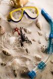 Conceito da praia do feriado Imagem de Stock Royalty Free