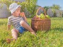 Conceito da produção do suco Fundo orgânico da nutrição Criança que prova a maçã verde foto de stock