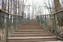 Conceito da solidão parque cinzento do outono Escadas acima imagem de stock