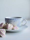 Conceito da ternura, marshmallow e copo quente do chá vermelho Foto de Stock