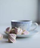 Conceito da ternura, marshmallow e copo quente do chá vermelho Fotos de Stock