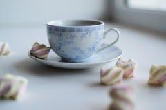 Conceito da ternura, marshmallow e copo quente do chá vermelho Foto de Stock Royalty Free