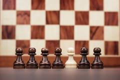 Conceito da unicidade sobre o fundo do tabuleiro de xadrez Fotos de Stock Royalty Free
