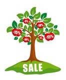 Conceito da venda: árvore com discontos Fotografia de Stock Royalty Free