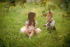 Conceito das crianças em férias de verão As crianças sentam-se sob a árvore de maçã no parque do verão fotografia de stock royalty free