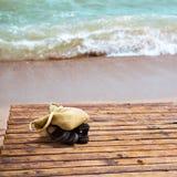 Conceito das férias Imagens de Stock Royalty Free