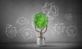 Conceito das inovações de Eco por meio da ampola Fotos de Stock Royalty Free