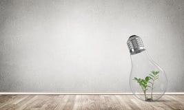 Conceito das inovações de Eco por meio da ampola Imagens de Stock