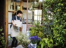 Conceito de Botany Bouquet Blooming do florista da loja do florista imagens de stock