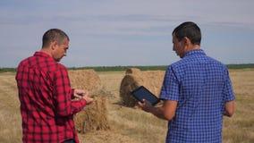 Conceito de cultivo esperto da agricultura dos trabalhos de equipe dois trabalhadores dos fazendeiros dos homens que andam estuda vídeos de arquivo
