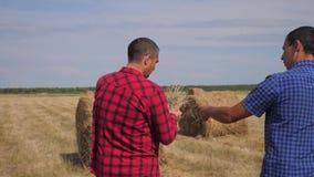 Conceito de cultivo esperto da agricultura dos trabalhos de equipe dois trabalhadores dos fazendeiros dos homens que andam estuda video estoque