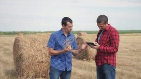 Conceito de cultivo esperto da agricultura dos trabalhos de equipe dois trabalhadores dos fazendeiros dos homens que estudam um m video estoque