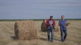 Conceito de cultivo esperto da agricultura dos trabalhos de equipe dois trabalhadores dos fazendeiros dos homens que estudam um m filme