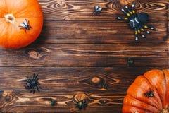 Conceito de Dia das Bruxas com abóbora fresca e close-up das aranhas na tabela vista horizontal de cima de Fotografia de Stock Royalty Free