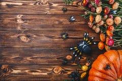 Conceito de Dia das Bruxas com abóboras, as aranhas e erros frescos com flores Opinião da doçura ou travessura de cima de Fotos de Stock Royalty Free