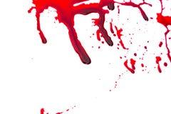 Conceito de Dia das Bruxas: Gotejamento do sangue Fotos de Stock Royalty Free