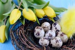 Conceito de Easter Imagem de Stock Royalty Free