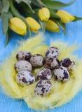 Conceito de Easter Imagens de Stock Royalty Free