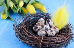 Conceito de Easter Fotos de Stock