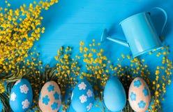 Conceito de Easter Colora ovos com as flores amarelas da mimosa e a lata molhando minúscula Fotos de Stock Royalty Free
