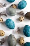 Conceito de easter da mola, - ovos da páscoa naturalmente tingidos, ovos de codorniz, penas, fundo de madeira branco, espaço da imagem de stock