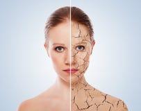 Conceito de efeitos cosméticos, tratamento, cuidado de pele Foto de Stock Royalty Free