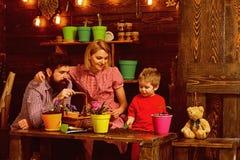 Conceito de família Família que planta flores em casa Mãe e pai da ajuda da criança pequena a importar-se com plantas Trabalho da fotografia de stock