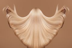 Conceito de Haircare Imagens de Stock