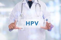 CONCEITO DE HPV fotografia de stock