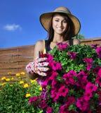 Conceito de jardinagem Imagem de Stock Royalty Free